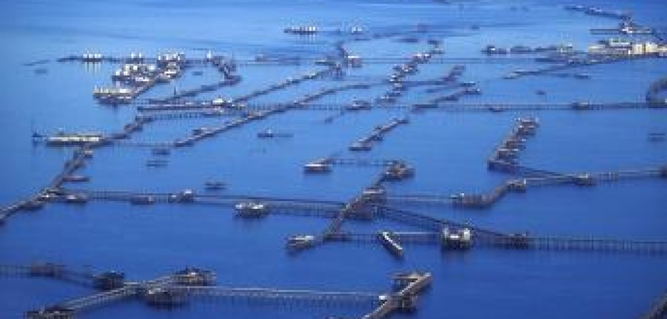 Условия нефтяного перемирия